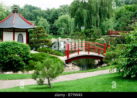 THE JAPANESE GARDEN AT NORMANDALE COMMUNITY COLLEGE IN BLOOMINGTON, MINNESOTA. SUMMER. - Stock Photo
