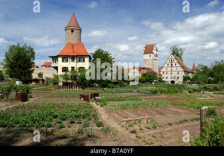 Vegetable gardens along town wall, Salwartenturm Tower, Noerdlinger Tor Gate, town mill, Dinkelsbuehl, Middle Franconia, - Stock Photo