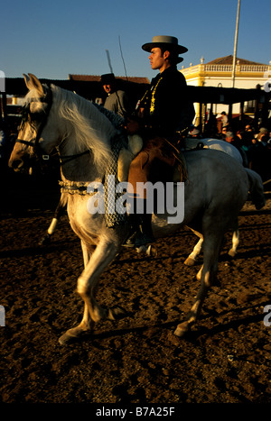 A horseman astride a Lusitano during the annual Golegã horse festival in Portugal - Stock Photo