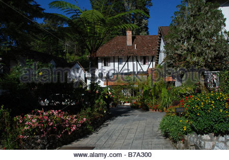 Asia malaysia cameron highlands mock tudor houses stock for Period hotel