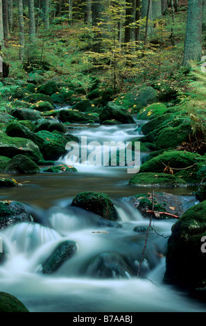 Mountain stream 'Kleine Ohr' in autumn, National Park Bavarian Forest, Bayerischer Wald, Lower Bavaria, Bavaria, - Stock Photo
