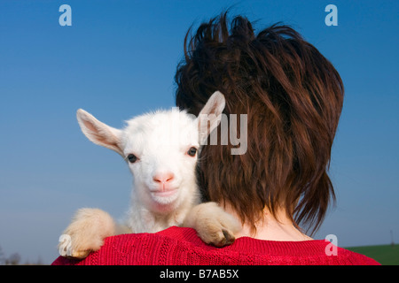 White goatling on woman's shoulder - Stock Photo