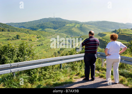 Vineyards in the mountains of the Kaiserstuhl - Stock Photo