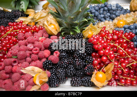 A variety of luscious fruit berries - Stock Photo