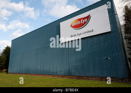 birds eye food factory lowestoft suffolk england stock photo royalty free image 21766561 alamy. Black Bedroom Furniture Sets. Home Design Ideas