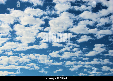 Fluffy white clouds against a bright blue sky - Stock Photo