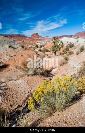 Desert landscape of the Paria section of Grand Staircase Escalante national park Utah - Stock Photo