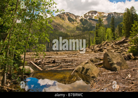 A view by Weller Lake, at the end of the Weller Lake Trail, Aspen, Colorado, USA. This easy trail ends with a magnificent - Stock Photo