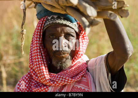 Elderly Dogon Man Carrying Wood on his Head in the Village of Yendouma in Pays Dogon in Mali - Stock Photo