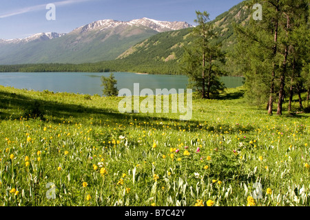 Kanas Lake in the Altay Mountains in Kanas national park in Xinjiang in China. - Stock Photo
