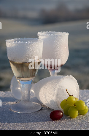 Morning-after-night-before frosted and broken wine glass party remains in frozen countryside UK - Stock Photo