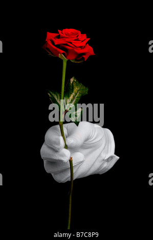 A single red rose being presented by a hand in a white glove isolated on a black background - Stock Photo
