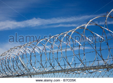 Razor wire concertina wire topping security fence - Stock Photo