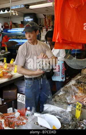 Fish Market, Canal Street, Chinatown, New York City, USA - Stock Photo