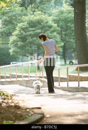 Dog-walking in park - Stock Photo
