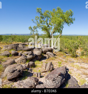 View from Nourlangie Rock looking South in Kakadu National Park - Stock Photo