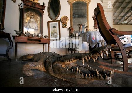 House of crocodile, Trinidad, Cuba island, West Indies, Central America - Stock Photo