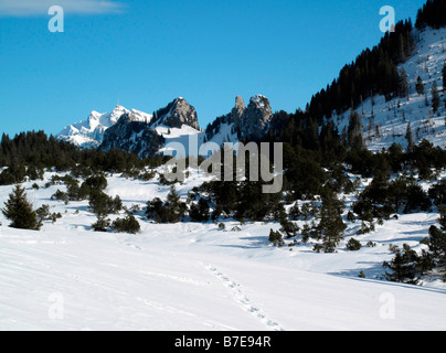 view from viewpoint of hintere hohe near village of amden canton of st gallen to mount santis swiss alpes switzerland - Stock Photo