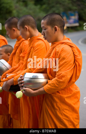 Novice Monks Collecting Alms, Thailand - Stock Photo