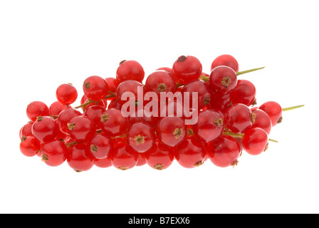 fresh red currant berries isolated on a white background - Stock Photo