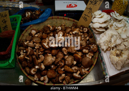 Various Chinese Mushrooms on sale at a Chinese market - Stock Photo