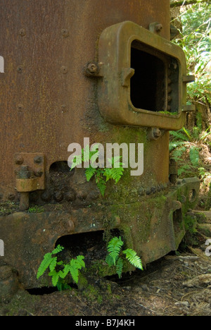 Rusty boiler from a steam engine in the early 20th century, West Coast Trail, Pacific Rim National Park Reserve, - Stock Photo
