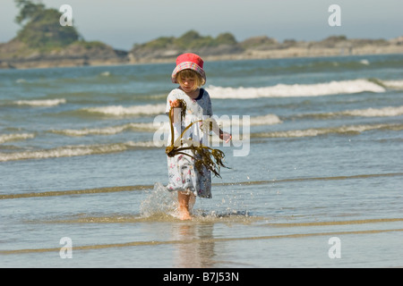 Young girl examines piece of kelp found on beach, Chesterman Beach, Tofino, British Columbia, Canada. - Stock Photo
