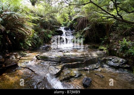 Leura cascades waterfall Blue Mountains New south Wales Australia - Stock Photo