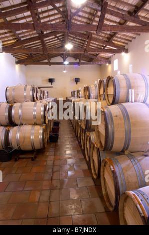 barrel aging cellar chateau guiraud sauternes bordeaux france - Stock Photo