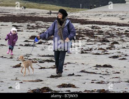 Woman taking whippet puppy for walk at Mounts Bay, Marazion, Cornwall, England, UK - Stock Photo