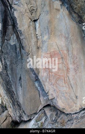 Bushman San rock paintings - Stock Photo