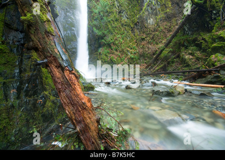 Little Niagara Falls plunges into the creek below, Goldstream Provincial Park near Victoria, BC, Canada - Stock Photo