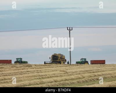 Combine Harvesting In Wheat Field - Stock Photo