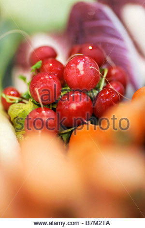 red radish and vegetables - Stock Photo