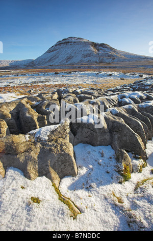 Snow covered Ingleborough Hill on a sunlit winters morning seen from the white scars area Ribblesdale Yorkshire - Stock Photo