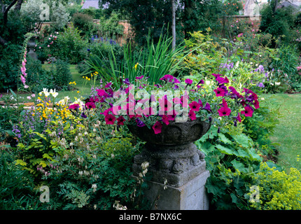 Stone urn planted with Petunia Purple Wave sitting in a mixed border - Stock Photo