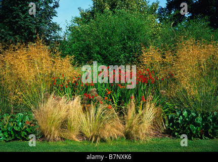 Crocosmia Lucifer with display of grasses at the Cotswold Wildlife Park - Stock Photo