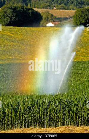 Irrigation of a field of maize near Angoulême, France. - Stock Photo