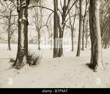 GB - GLOUCESTERSHIRE: Winter Scene in Cheltenham's Pittville Park - Stock Photo