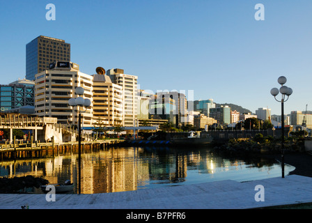 Office buildings with reflections in lagoon, at dawn, Wellington, New Zealand - Stock Photo