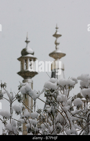 Ornate turrets of the Royal Pavilion Brighton at dawn in distance behind snow covered bush in the Pavilion gardens - Stock Photo