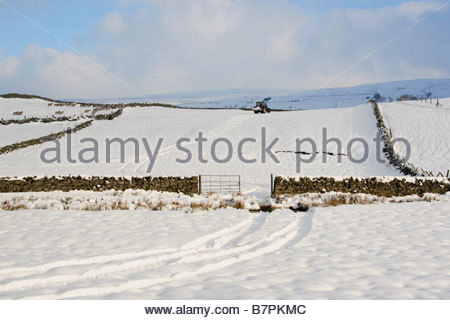 Farming in Winter on the North Pennine Hills, Near Middleton-in-Teesdale, Co Durham - Stock Photo