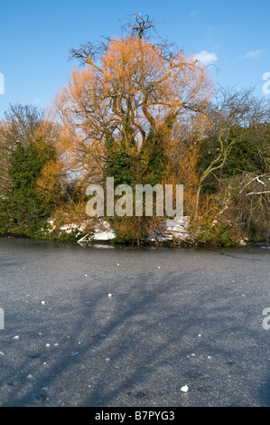 UK.Lake covered in snow and ice in Victoria Park, London Photo Julio Etchart - Stock Photo