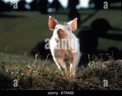 Babe Year: 1995 - Australia / USA Director: Chris Noonan - Stock Photo