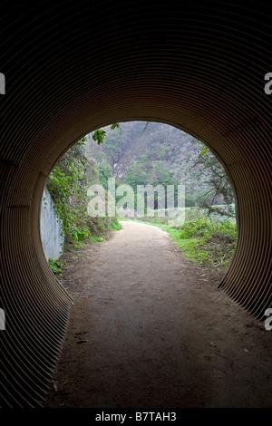 Pedestrian tunnel, Julia Pfeiffer Burns State Park; Big Sur coast, California, USA - Stock Photo