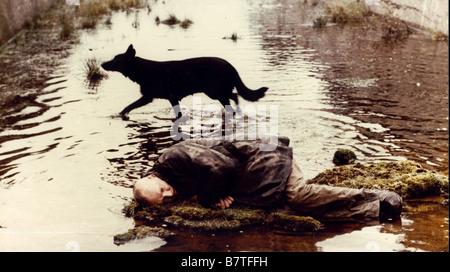 Stalker Year: 1979 - Soviet Union Director: Andrei Tarkovsky Aleksandr Kaidanovsky - Stock Photo