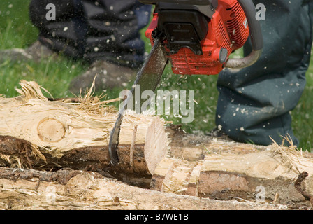 woodcutter cutting log with chainsaw - Stock Photo