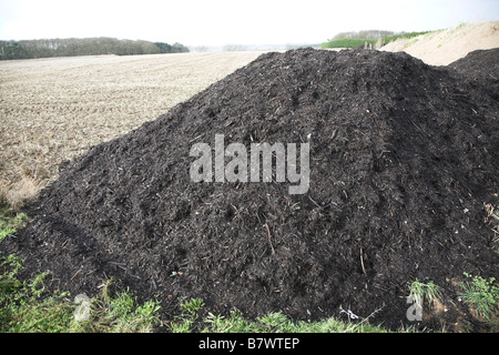 Pile of organic compost manure fertiliser by arable field Sutton Suffolk England - Stock Photo