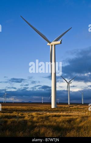 dh Causeymire Wind Farm ELECTRICITY CAITHNESS Scotland Npower renewables Power RWE Wind Turbine farms windfarm uk renewable winter energy turbines