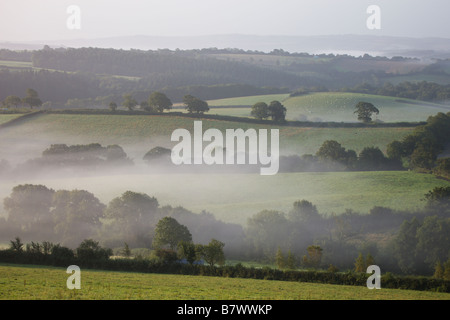 Mist hangs low over fields at dawn in rural Devon Crediton Devon England - Stock Photo